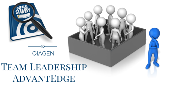 CaTeam Leadership AdvantEdge